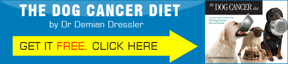 FREE Dog Cancer Diet - Dog Cancer Blog